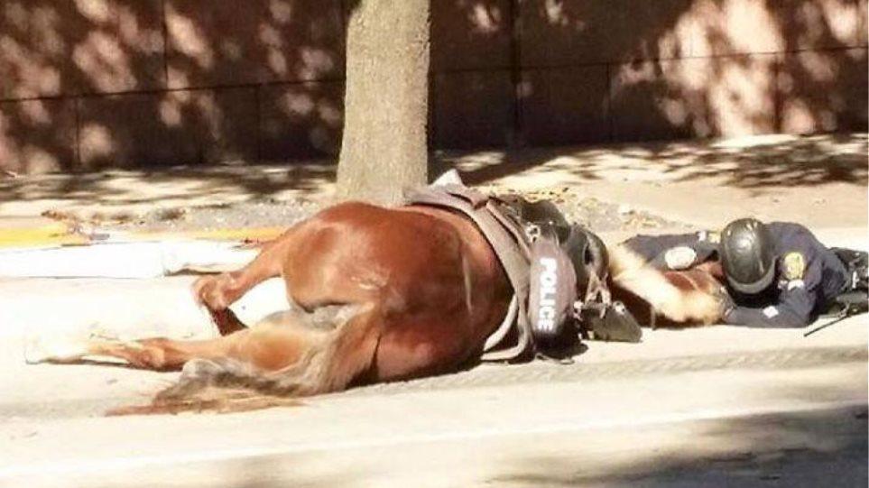 Αστυνομικός παρηγορεί το άλογό του, που ξεψυχάει