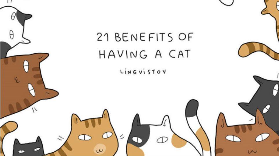 3559dbac22b8 21 θετικά του να έχει κανείς γάτα