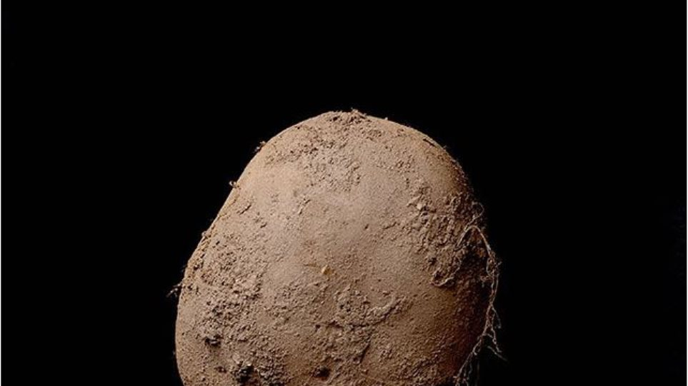 Απίστευτο: Η φωτογραφία μιας... πατάτας πωλήθηκε για 1 εκατομμύριο ευρώ