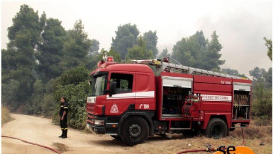Φωτιά στο Πολύκαστρο - 14 πυροσβεστικά οχήματα στην περιοχή