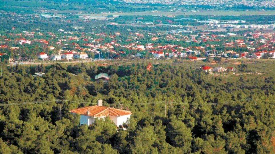 «Όμηροι» των δασικών χαρτών οι ιδιοκτήτες οικοπέδων σε Άγιο Στέφανο και Άνοιξη