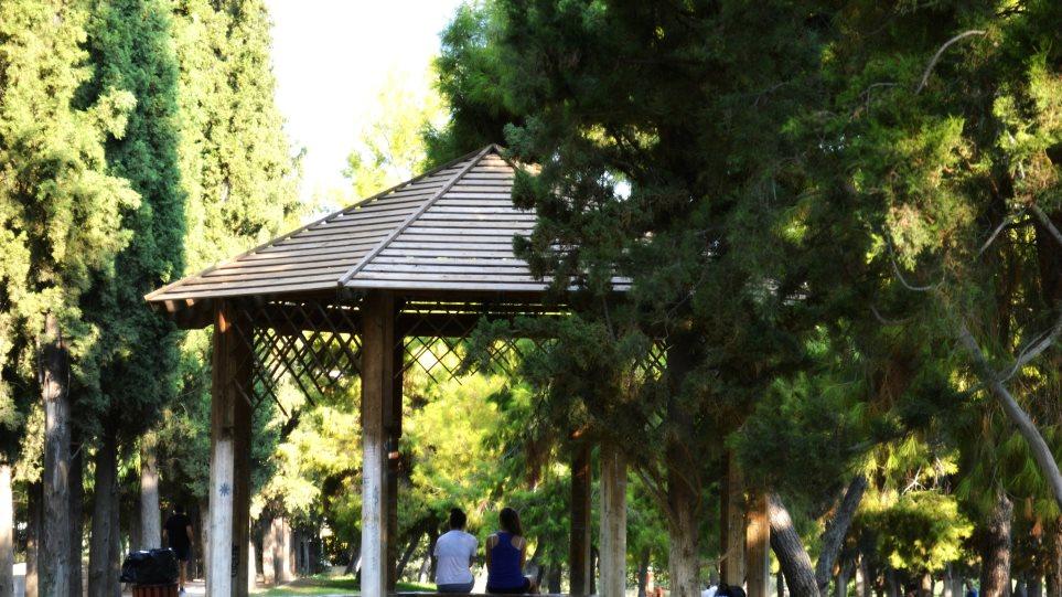 Nύχτες πολιτισμού στο Άλσος Νέας Σμύρνης
