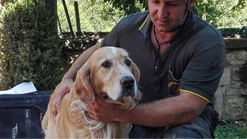 Σεισμός στην Ιταλία: Ο σκύλος που έζησε επί 9 ημέρες εγκλωβισμένος στα χαλάσματα