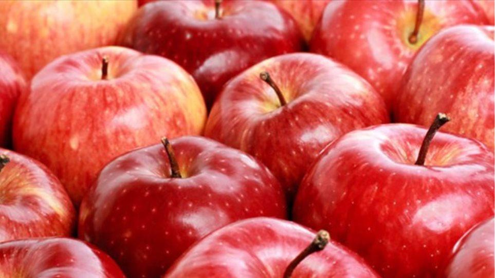 Δέσμευση 4,8 τόνων μήλων χωρίς σήμανση στου Ρέντη