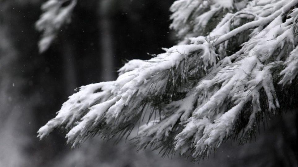 Καιρός: Χαμηλές θερμοκρασίες, παγετός και χιόνια στα ορεινά