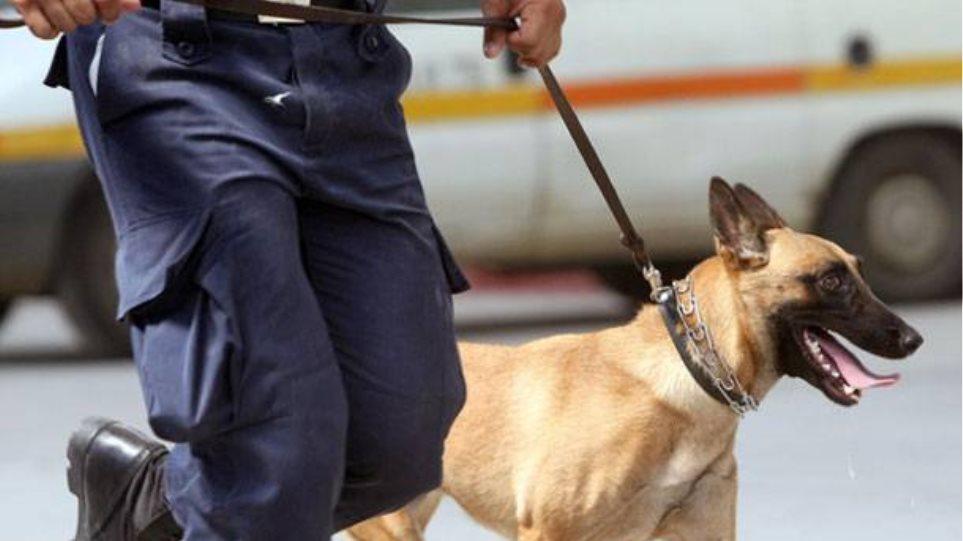 Σύρος: Συνελήφθησαν με ένα κιλό χασίς