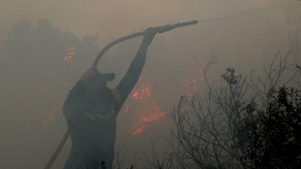 Σύμβουλος περιφέρειας Αττικής: Οι φωτιές είναι φυσικό φαινόμενο!