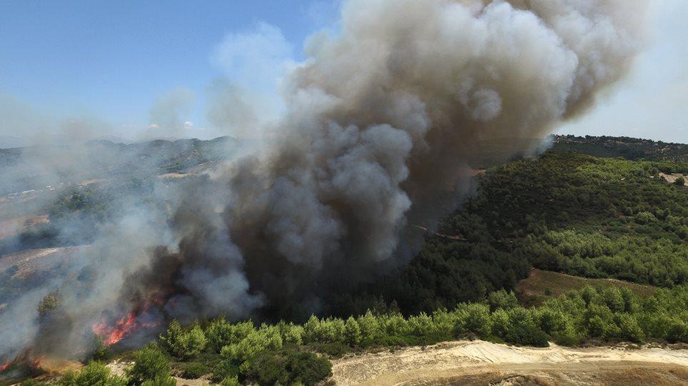 Ηλεία: Τρεις οι ανεξέλεγκτες πυρκαγιές