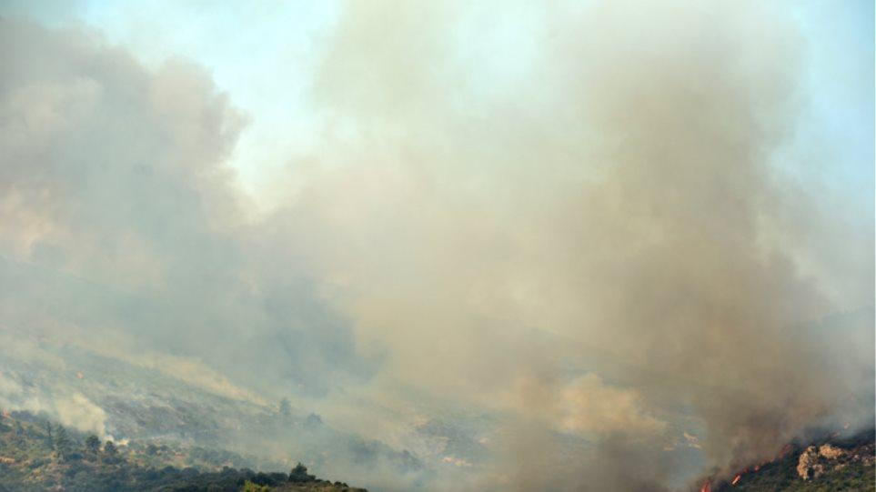 Μαίνεται η μεγάλη φωτιά στην Αττική: Στο Καπανδρίτι η μάχη με τις φλόγες