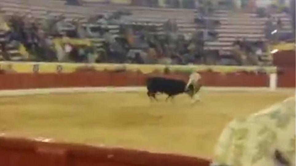 Βίντεο: Ταυρομάχος προκάλεσε με γυμνά χέρια τον ταύρο και το πλήρωσε με τη ζωή του