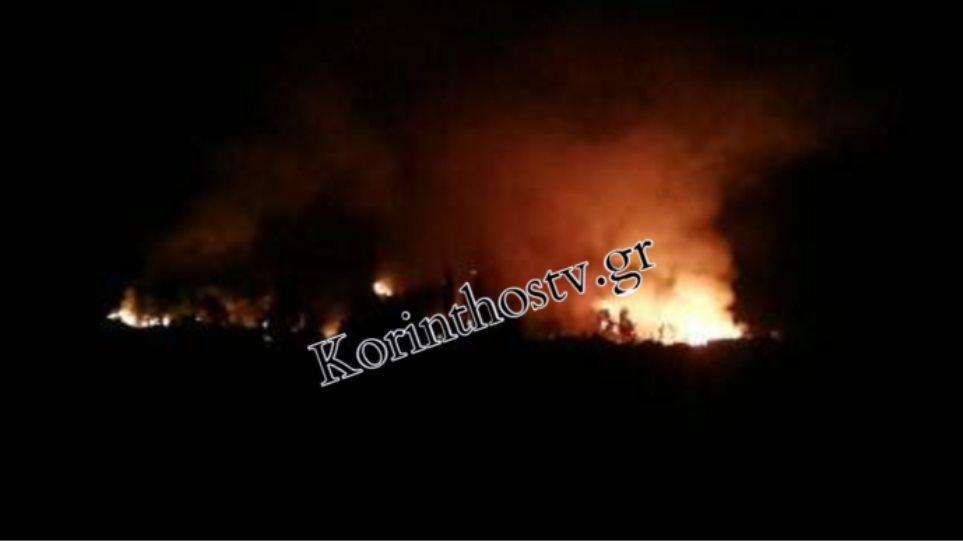Ανεξέλεγκτη μαίνεται η φωτιά στο Κούτσι Νεμέας