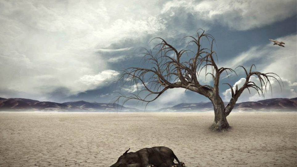 «SOS» από επιστήμονες: Η εξάλειψη ζωής στον πλανήτη μπορεί να έρθει μέχρι το 2100