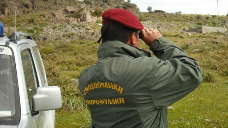 Επίθεση με ψαλίδι σε πρόεδρο Κυνηγετικής Ομοσπονδίας!