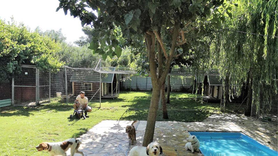 Πεντάστερες διακοπές για κατοικίδια στη Βαρυμπόμπη