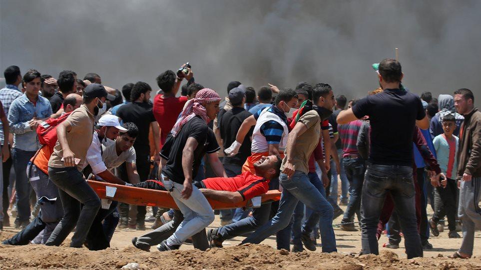 palestini_arthroooo