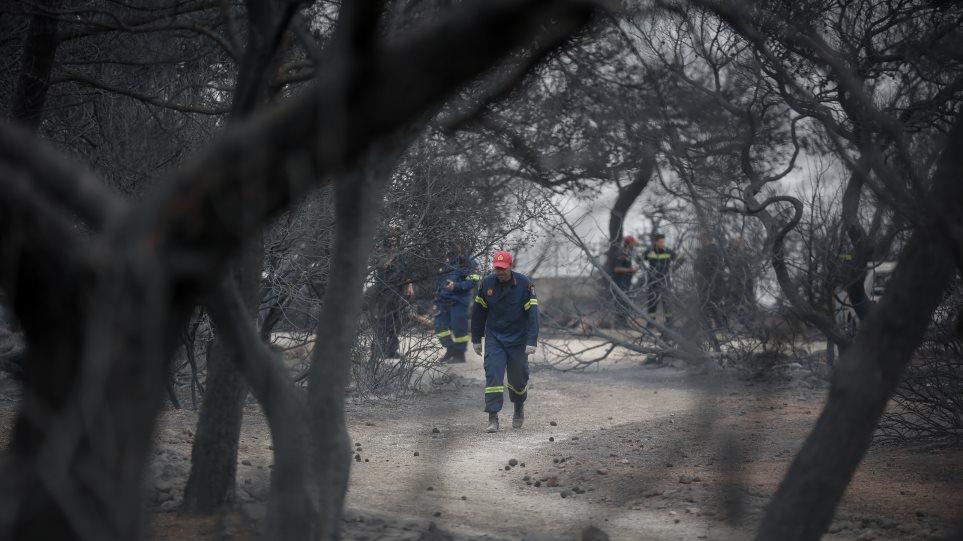 H Ευρωκλινική Παίδων ανοίγει το τμήμα επειγόντων στα παιδιά των περιοχών που επλήγησαν από τις πυρκαγιές