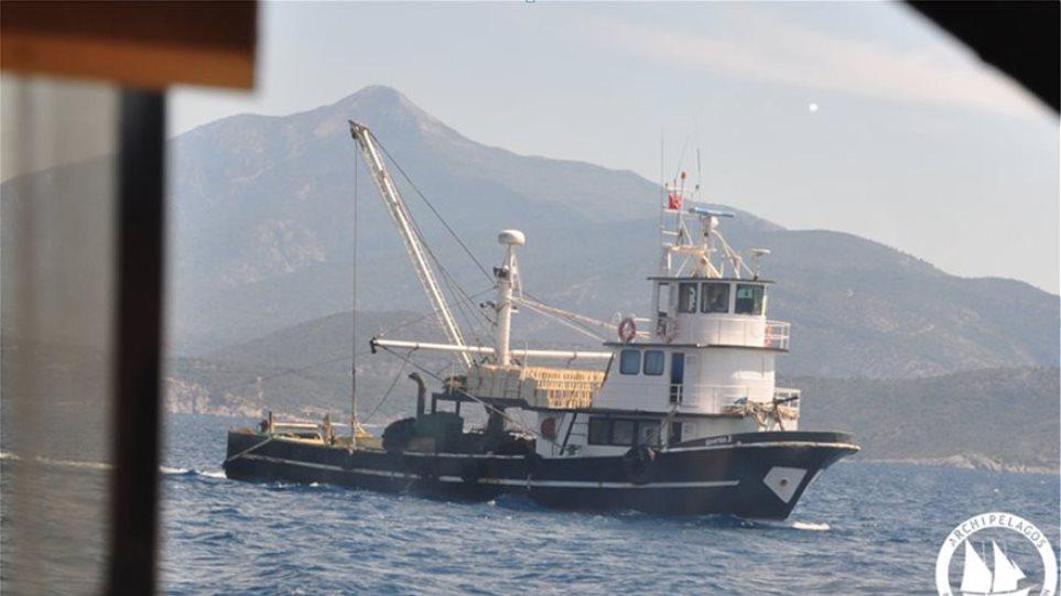 Διευθύντρια Ινστιτούτου Αρχιπέλαγος: Την Κυριακή στα ελληνικά χωρικά ύδατα ψάρευαν 10 τουρκικές μηχανότρατες