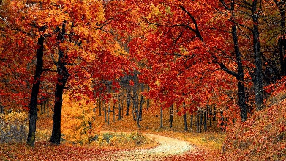 Αποτέλεσμα εικόνας για φθινοπωρο