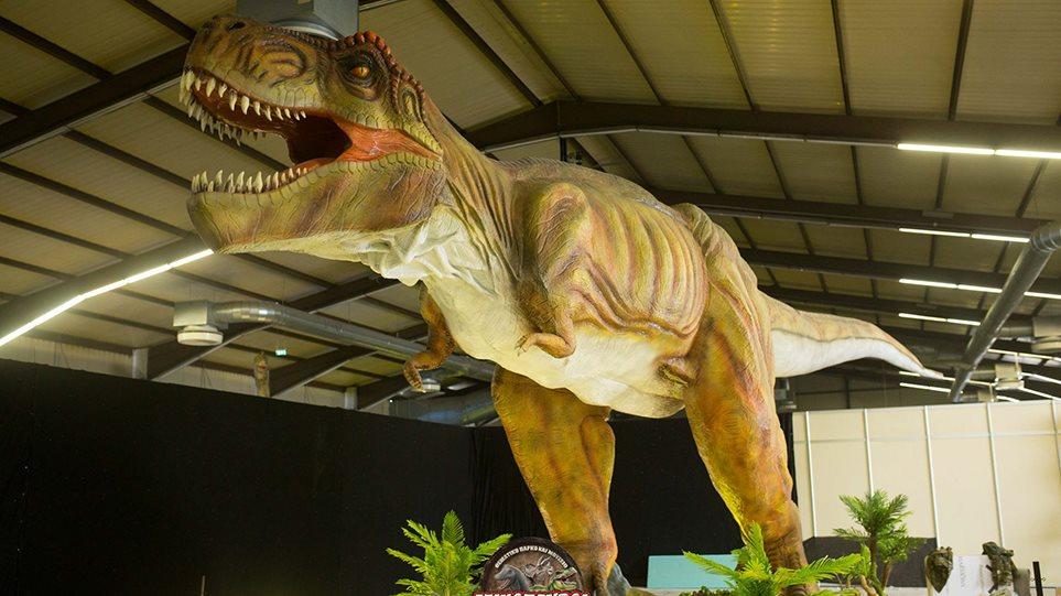 dinosavroi