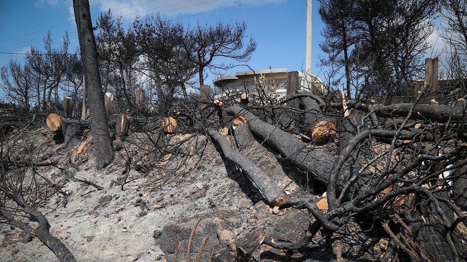 cc80ea7a18 Φωτιά στο Μάτι  Υπέγραψαν αυτοψίες αξιωματικοί της πυροσβεστικής που ήταν  εκτός Αττικής