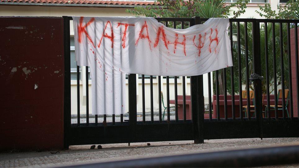 katalipsi_arthro