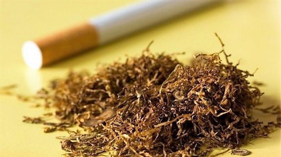 ΣΔΟΕ: Εντόπισε παράνομο εργοστάσιο επεξεργασίας καπνικών στην Τανάγρα