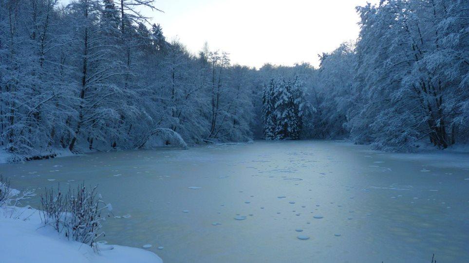 frozen-laker