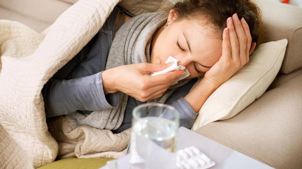gripi01-mesa