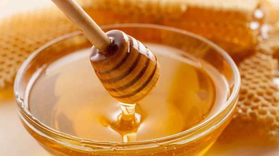 Εντυπωσιακή αύξηση 50% στις εξαγωγές ελληνικού μελιού στη Γαλλία