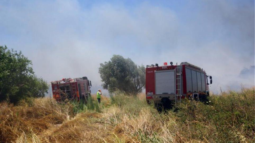Δύο φωτιές σε εξέλιξη στη Λάρισα - Η μία σε επιχείρηση έξω από την πόλη
