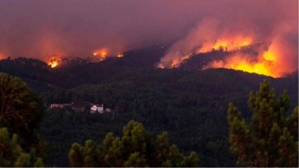 Πορτογαλία: Σε «πύρινο κλοιό» κεντρικό τμήμα της χώρας - Πάνω από 900 πυροσβέστες στη μάχη με τις φλόγες