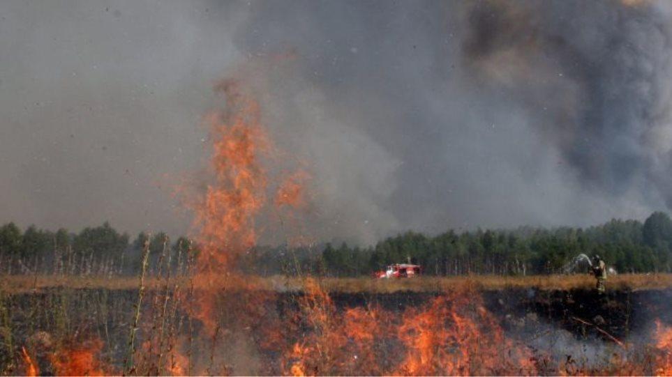 Η Ιταλία ενδέχεται να στείλει δύο Canadair για να βοηθήσει στην κατάσβεση των πυρκαγιών στη Ρωσία