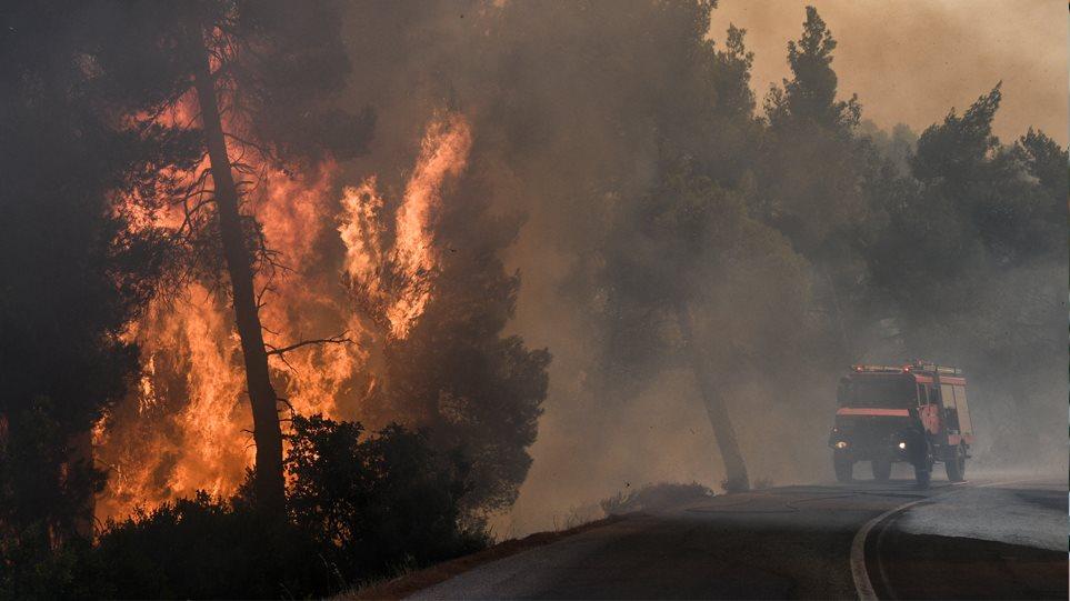 Ανεξέλεγκτη η φωτιά στην Εύβοια: Καίγεται το δάσος Natura - Ενισχύονται οι δυνάμεις της πυροσβεστικής