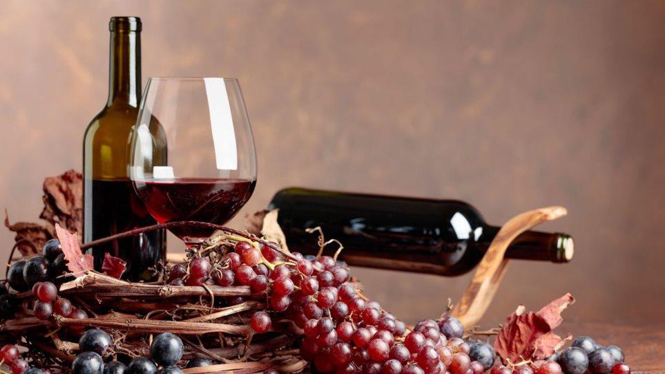 190517170150_wine159-1280x854