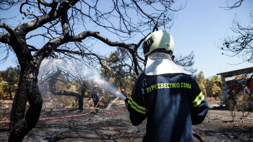 Σε πύρινο κλοιό χωριά στην Κέρκυρα - Μεγάλες φωτιές σε Ηλεία και Αρκαδία