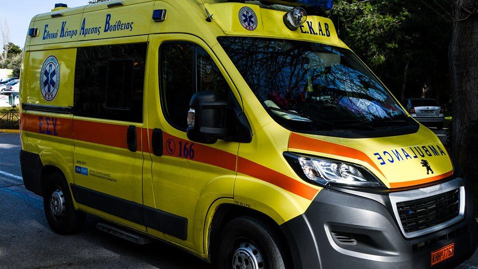 Τραγωδία στα Γλυκά Νερά: Ροτβάιλερ σκότωσε βρέφος