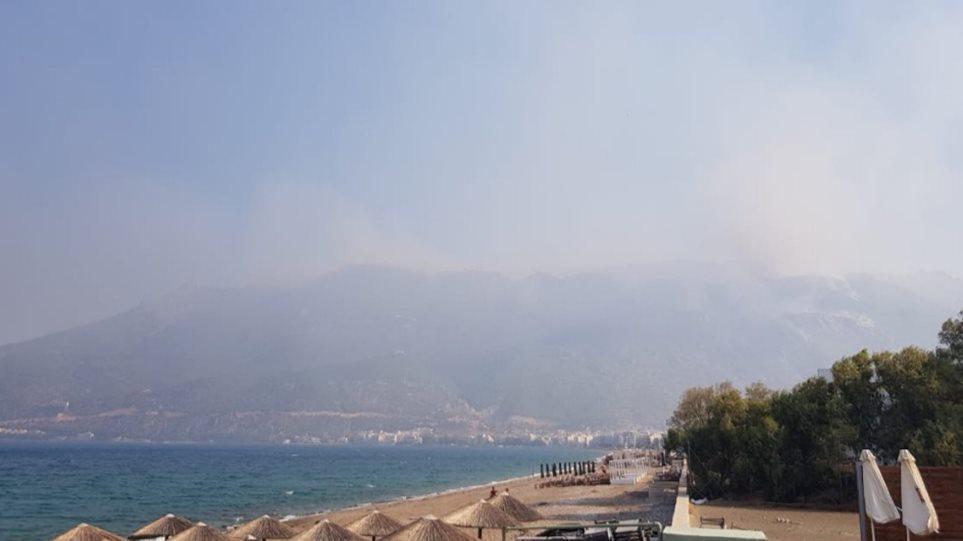 Φωτιά στο Λουτράκι: Μάχη με τις αναζωπυρώσεις - Κομάντο της ΕΜΑΚ με Super Pumα στην κορυφή του βουνού