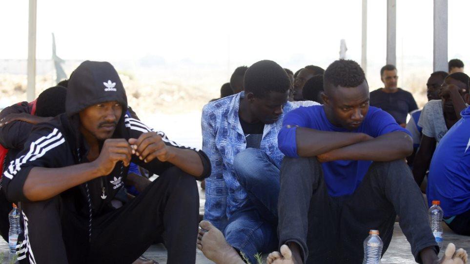 metanastes_libya