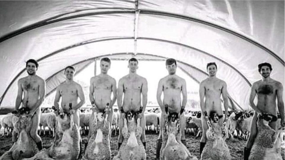 Φοιτητές στη Βρετανία φωτογραφήθηκαν γυμνοί με πρόβατα και ξεσηκώθηκαν οι vigan! (ΦΩΤΟ)