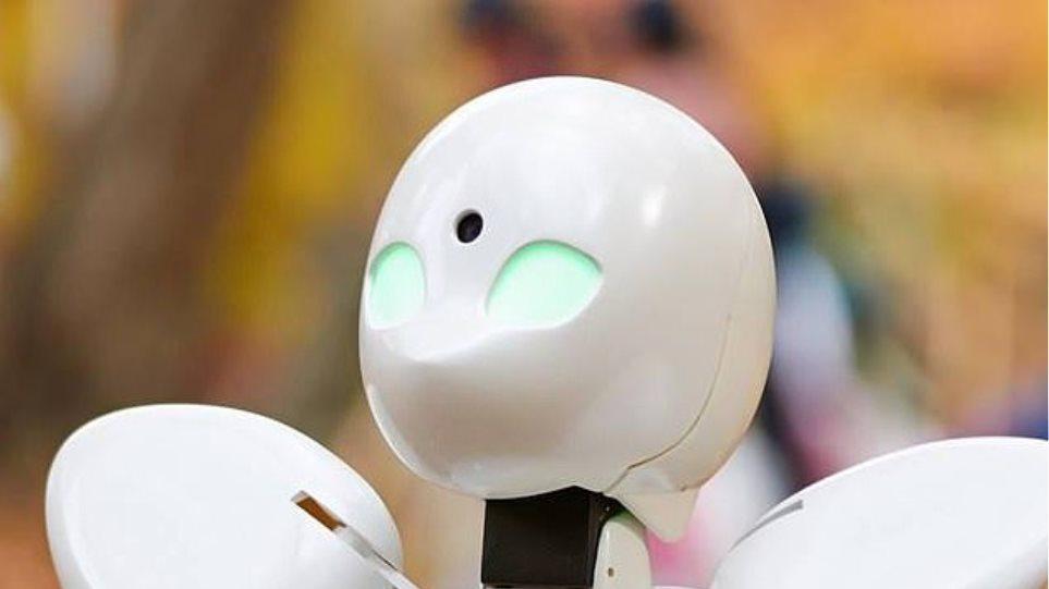 robot-iapnoia