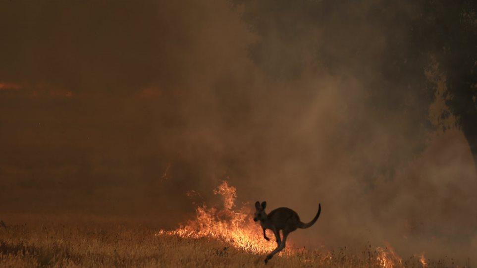 Αυστραλία: Μαίνονται οι πυρκαγιές- Ένας άνθρωπος εντοπίστηκε νεκρός στη Νότια Αυστραλία