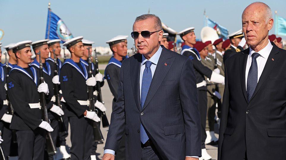 erdogan-2512-arthro