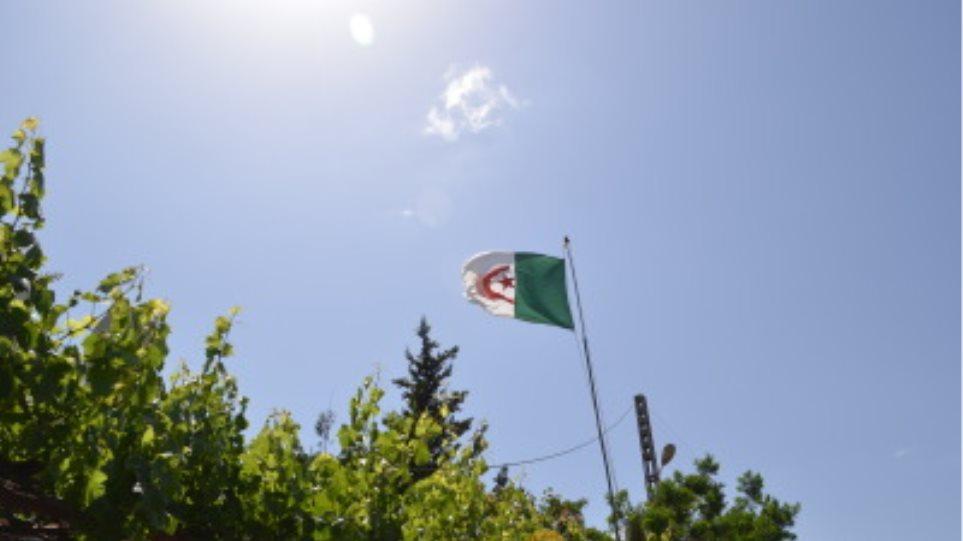 algeria_simaia