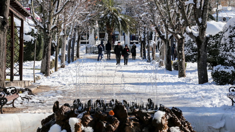 pagetos_snow