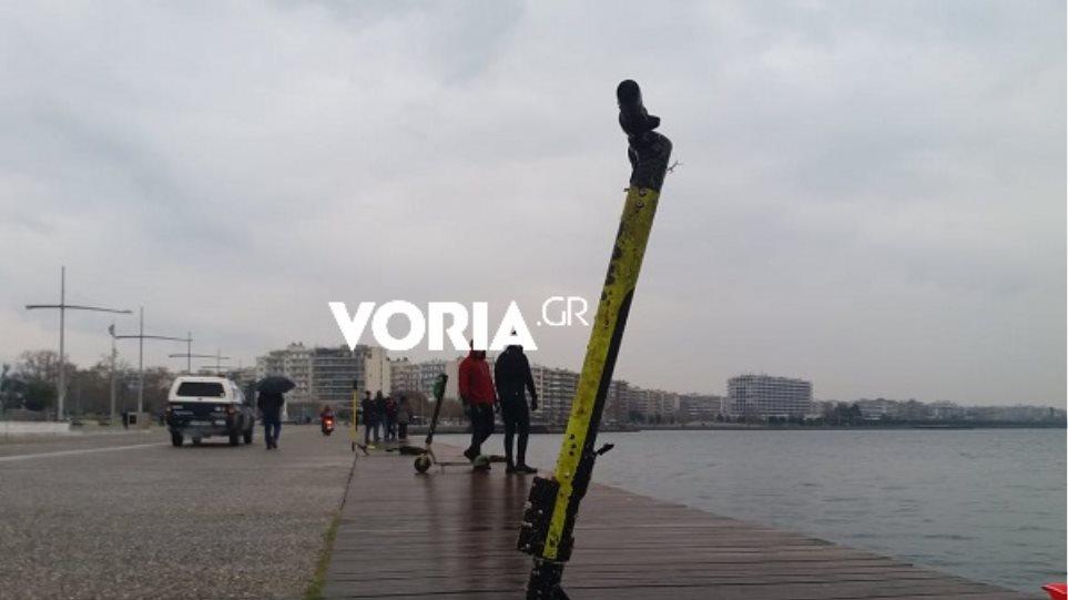 voria_gr1