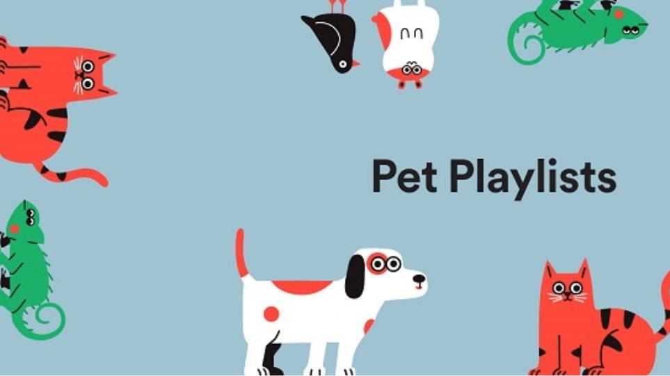 pets_spotify