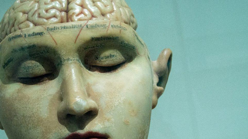 braini