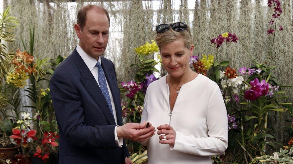 Βρετανία: Η αγαπημένη νύφη της Ελισάβετ «επιστρατεύθηκε» να καλύψει το κενό που άφησε το Megxit