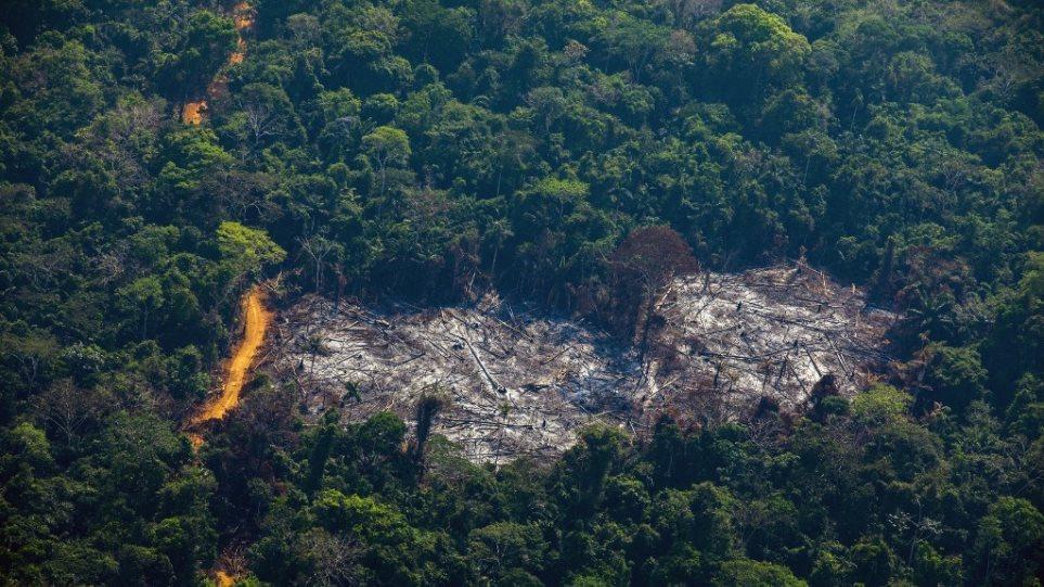 Κορωνοϊός - Αμαζόνιος: Τρομακτική καταστροφή του «πνεύμονα» του πλανήτη
