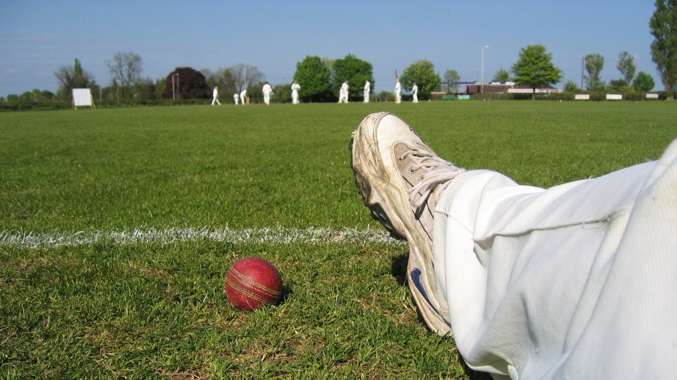 cricket-1